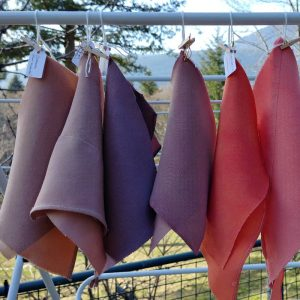 Swatches of Naturally Dyed Silk