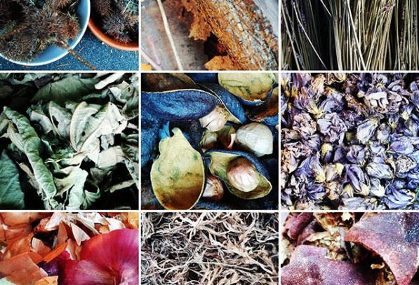 Natural dyes collected from nature