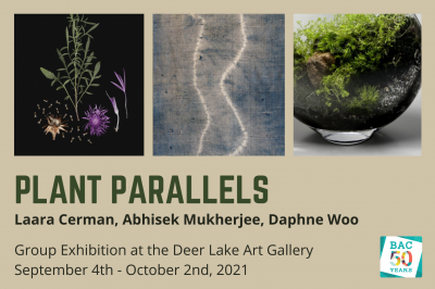 Plant Parallels